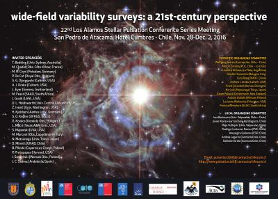 wide field variability surveys: a 21st-century prespective